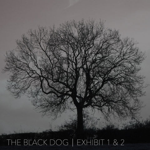 Exhibit 1 & 2 by The Black Dog (Downloads)