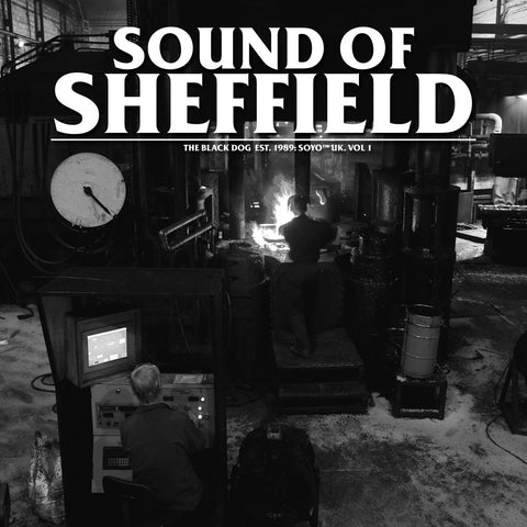 Sound of Sheffield Vol. 01 by The Black Dog (Downloads)