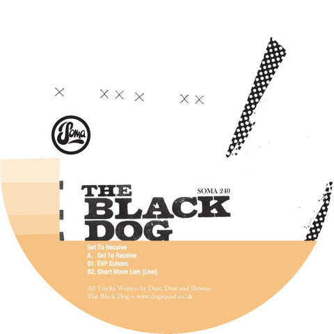 Set To Receive by The Black Dog (Vinyl)