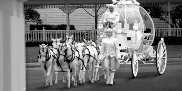 Disney Cinderella Wedding Coach with Horses