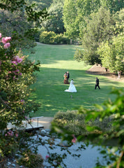 How to book a Wedding at the Los Angeles County Arboretum & Botanic Garden