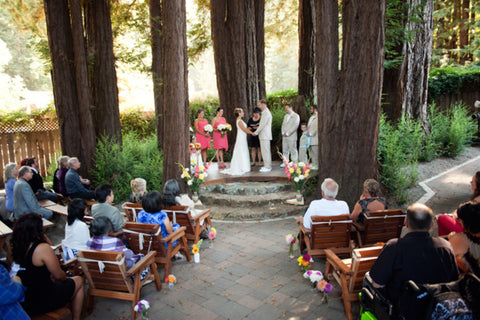 Roaring Camp Railroad Wedding