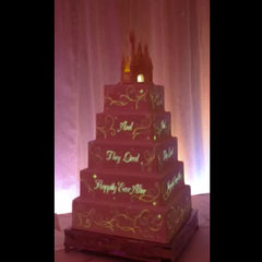 The Best 3D Projection Mapping Wedding Cakes