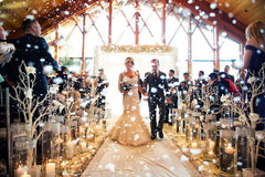 Winter Wedding Wonderland Aisle