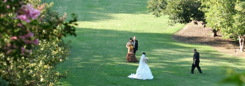 Weddings at the Los Angeles County Arboretum & Botanic Garden