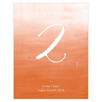 Tangerine Orange Aqueous Table Number Card