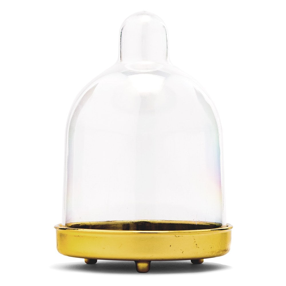 Mini Dome Container with Gold Bottom Wedding Party Favor (Set of 2)