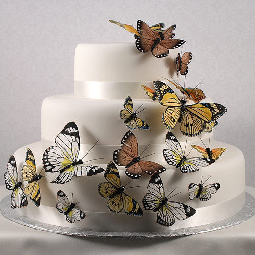 Butterfly Wedding Party Cake Set in Natural Elegance