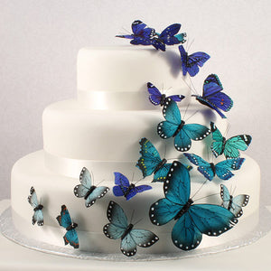 Butterfly Wedding Party Cake Set in Something Blue