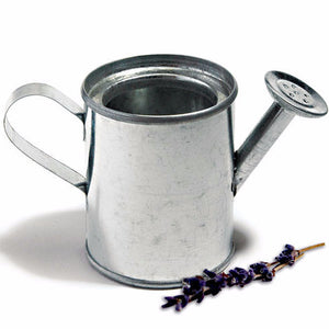 Mini Watering Can Wedding Party Favor Idea