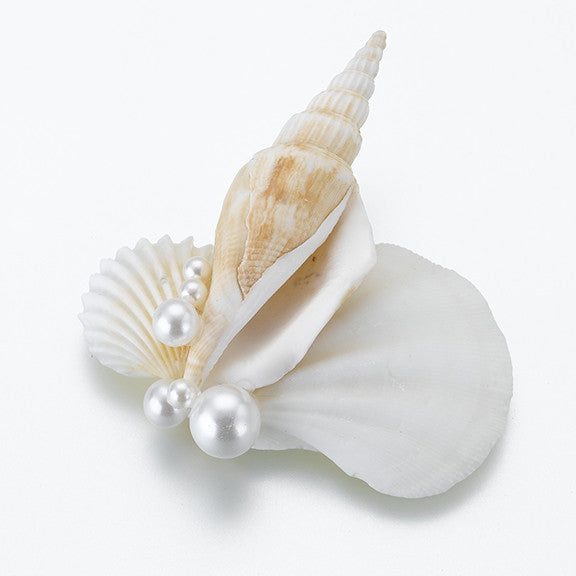 Seashell Groom Groomsmen Wedding Boutonniere