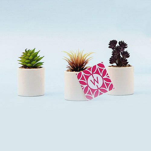 Mini Faux Succulent Plant Party Table Decor (Set Of 6)