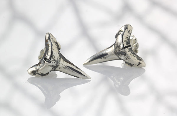 Sterling Silver Bull Shark Tooth Earrings