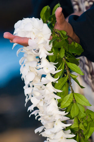 Good Luck Wedding Lei Package
