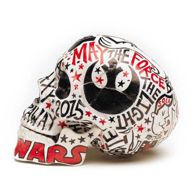 Skull | Star Wars | Art All Over | Fine Art and Limited Edition Prints | The Art Of Nan Coffey