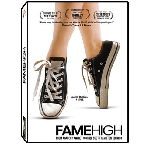 FAME HIGH DVD - EDUCATIONAL USE