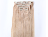 "20"" Clip In Hair Extensions Deluxe Set - #24 Light Sandy Blonde"