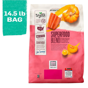 Purina Beyond Superfood Blend Salmon, Egg, and Pumpkin Recipe Dry Dog Food