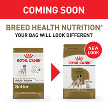 Load image into Gallery viewer, Royal Canin Breed Health Nutrition Adult Setter Dry Dog Food