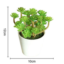 Load image into Gallery viewer, Artificial Plants Bonsai Vivid Cactus Succulent Pot Plants Fake Flowers Potted Ornaments For Home Decoration Hotel Garden Decor
