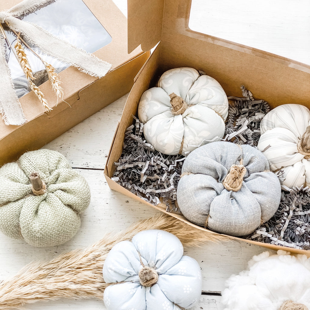 Assorted 3 Pack of Pumpkins ** Limited Edition**