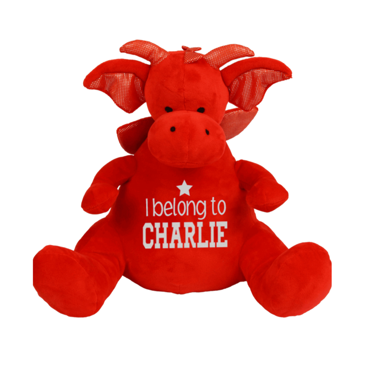 Personalised Dragon Teddy Rachel J Designs
