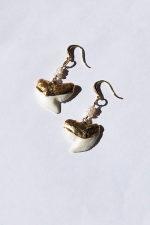 Pade Vavra Gold White Tooth Shark Drop Earrings
