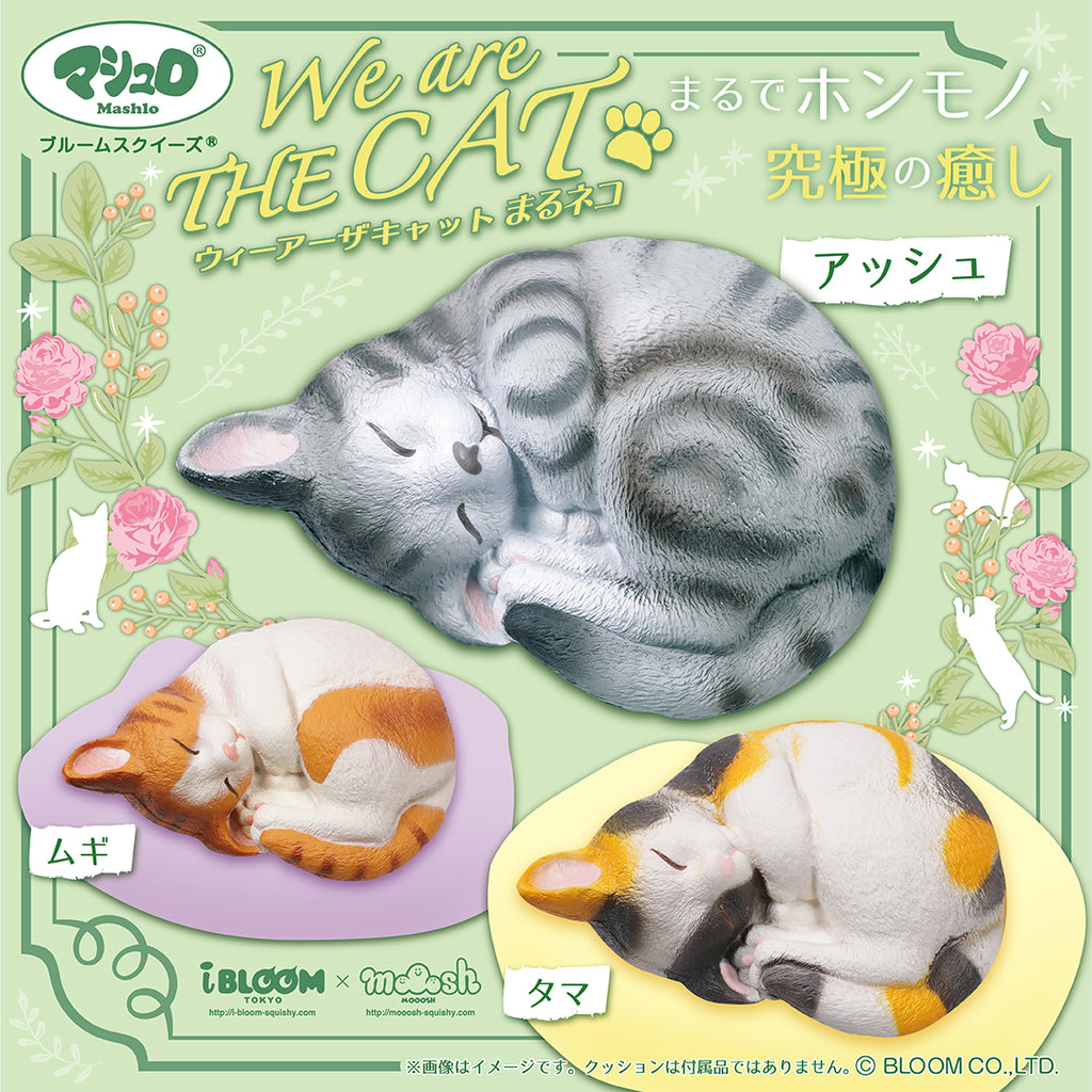 iBloom We Are The Cat Curled Squishy