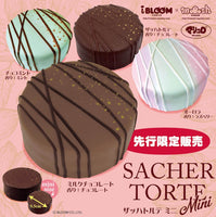 iBloom Mini Sacher Torte Squishy