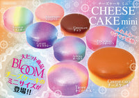 Mini iBloom Cheesecake Squishy New Packaging