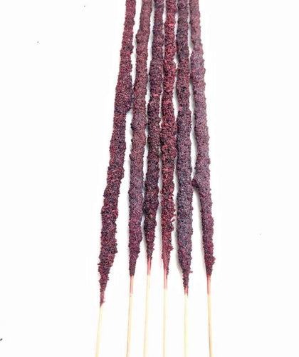 Dragons Blood & Palo Santo Resin Incense Stix