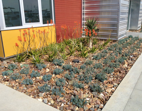 6 Reasons Why You Should Use Rock in Your Landscaping