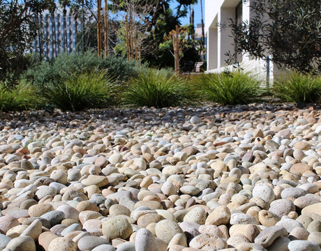 Buff Mexican Beach Pebbles