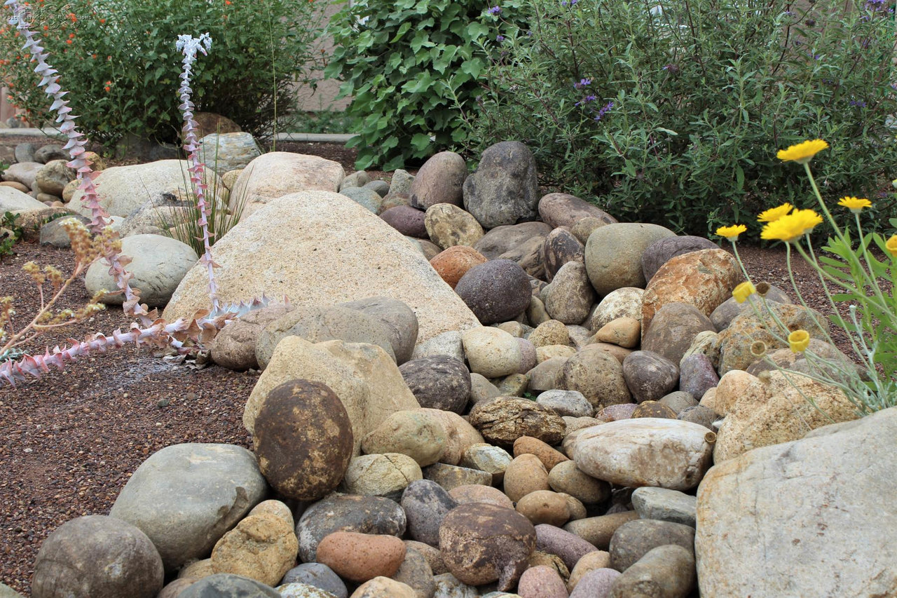 Multiple stones in a garden setting