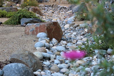 How You Can Make a Rocking Dry Stream Bed in 5 Easy Steps
