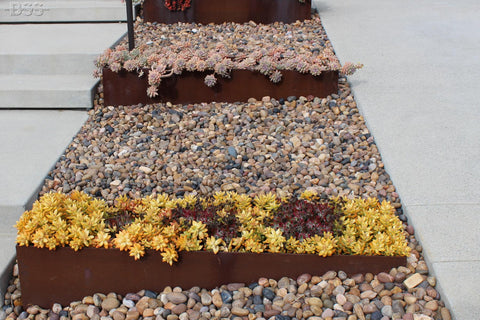 Sonora Shine Pebble Border