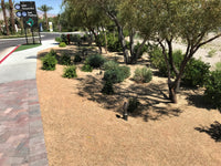 California Gold Gravel Hardscape