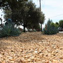 Copper Canyon Decorative Landscape Gravel