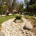 Full Moon Decorative Landscape River Rock