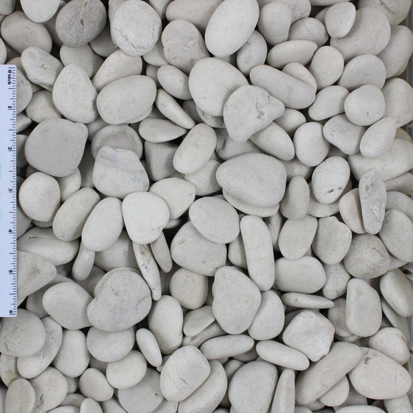 "Ivory Pebble Sample .5""-1"""