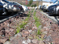 Jalapeno Decorative Landscape Gravel