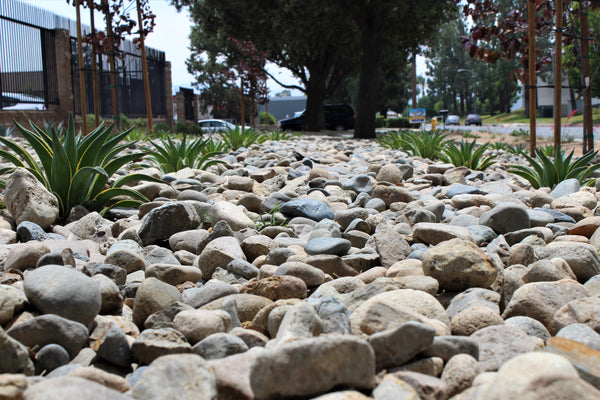 Malibu Cobble Decorative Landscape River Rock