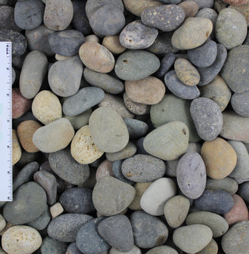 Mixed Beach Pebbles Decorative Landscape Cobble