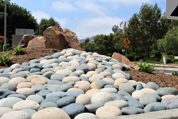 Mixed Mexican Landscape Beach Pebbles