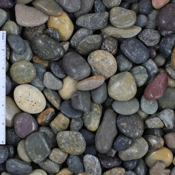 Polished Mixed Mexican Landscape Beach Pebbles