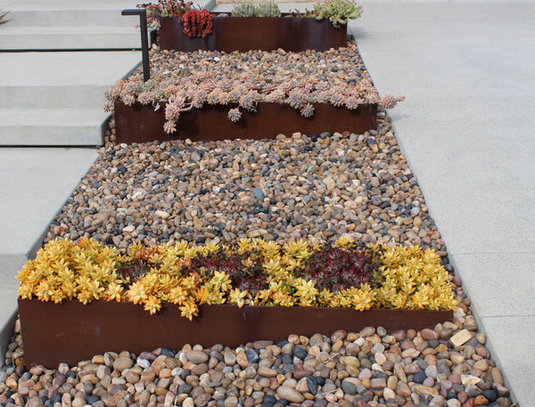 Sonora shine decorative rock as ground cover