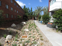 South Face Decorative Landscape Gravel