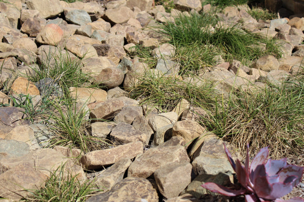 Topanga Decorative Rocks in a Landscape