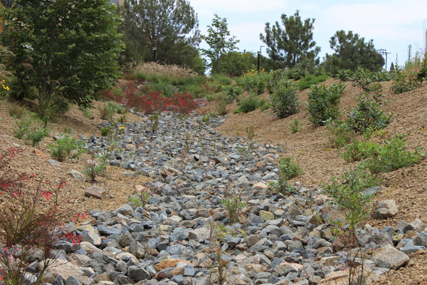 Topanga Decorative Rocks in a dry riverbed