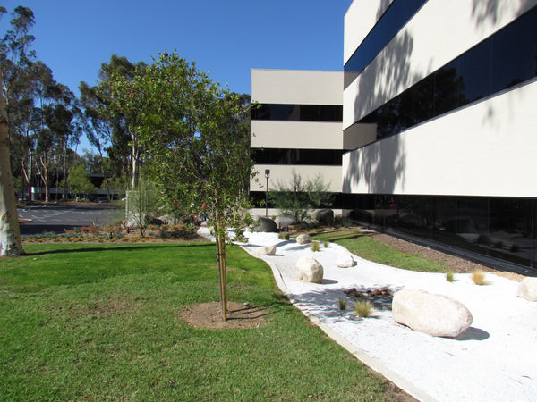 White Decorative Landscape Decomposed Granite in an office application with grass